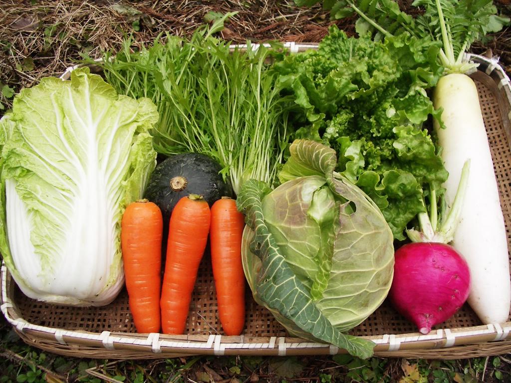 野菜セットイメージ
